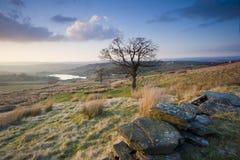 Yorkshire-Heidemooransicht Stockbilder