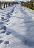 Yorkshire, Inglaterra - o campo coberto com a neve Foto de Stock
