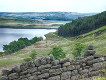 Yorkshire landscape with dry stone wall Stock Images