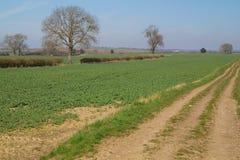 Yorkshire-Landschaft Stockbild