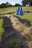 Yorkshire Lavender - United Kingdom. The tourist attraction of the 'Yorkshire Lavender Farm and Gardens' near Malton in North Yorkshire in the United Kingdom Royalty Free Stock Photos