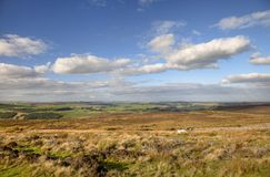 Yorkshire moorland Royalty Free Stock Photography