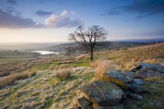 Yorkshire moorland view. A classic view over Yorkshire dales moorland on a fine sunny afternoon in springtime stock images