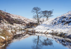 Yorkshire moorland winter landscape. Moorland in Northern England on a clear blue winters day royalty free stock image