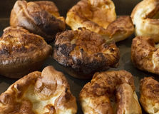 Yorkshire puddings. A tray of yorkshire puddings Royalty Free Stock Photos
