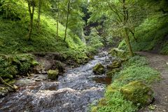 Yorkshire river Royalty Free Stock Photography