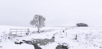 Free Yorkshire Snowfall Royalty Free Stock Image - 75457836