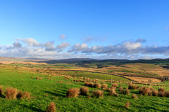 Yorkshire-Täler Lizenzfreies Stockfoto