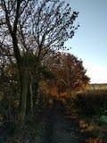 Yorkshire-Talweg Stockfotos