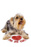 Yorkshire terrier with a 3d heart Stock Photography