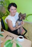 Yorkshire terrier dell'ufficio di affari della donna Immagini Stock Libere da Diritti