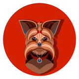 Yorkshire Terrier dog face - vector illustration Stock Image