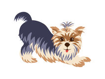 Yorkshire Terrier in a funny pose hand drawn painted cartoon Stock Image