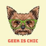 Yorkshire terrier Geek. Smart glasses. Geek is chic lettering. Dog nerd portrait. Vector. Yorkshire terrier Geek. Smart glasses. Geek is chic lettering. Dog royalty free illustration
