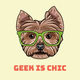 Yorkshire terrier Geek. Smart glasses. Geek is chic. Dog nerd. Vector. Yorkshire terrier Geek. Smart glasses. Geek is chic. Dog nerd. Vector illustration royalty free illustration