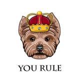 Yorkshire Terrier hundkonung Kronaemblem Yorkshire Terrier drottning Du härskar inskriften vektor Fotografering för Bildbyråer