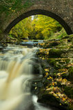 Yorkshire waterfall in gorgeous Autumn colour Stock Photography