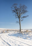 Yorkshire-Winterlandschaft Stockbild