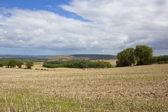 Yorkshire wolds arable Stock Images
