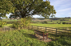 Yorkshire wolds bench Royalty Free Stock Images