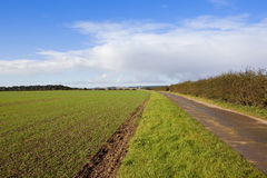 Yorkshire-Wolds bridleway Stockfoto