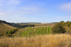 Yorkshire wolds countryside Stock Photo