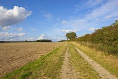 Yorkshire wolds farm track Royalty Free Stock Images