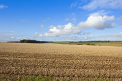 Yorkshire wolds farming Stock Images