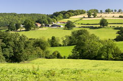 Yorkshire Wolds Royalty Free Stock Images