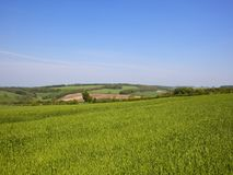 Yorkshire Wolds scenic patchwork fields Royalty Free Stock Photos