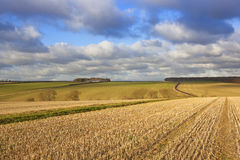 Yorkshire wolds som farmling Arkivbild