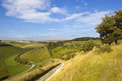 Yorkshire wolds valley Royalty Free Stock Images