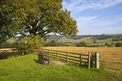 Yorkshire wolds viewing seat Royalty Free Stock Photos