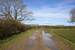 Yorkshire-Woldslandfußweg mit Pfützen im Frühjahr Lizenzfreie Stockfotografie