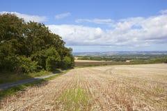 Yorkshire-Woldslandschaft Stockfotografie