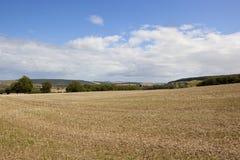 Yorkshire-Woldslandschaft Stockbilder