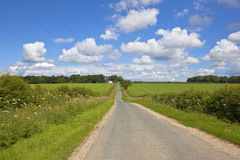Yorkshire-Woldslandschaft im Sommer Stockfoto