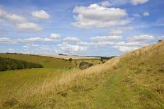 Yorkshire-Woldstal Stockfotos