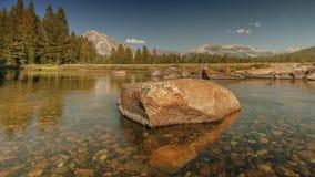 Yosemite äng stock video