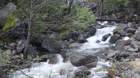 Yosemite την άνοιξη απόθεμα βίντεο