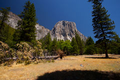 Yosemite Royalty Free Stock Photography