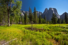Yosemite Royalty Free Stock Images