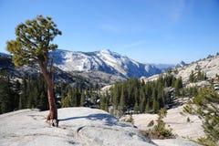Yosemite Photos stock