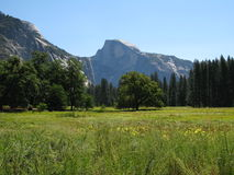 Yosemite Royalty Free Stock Image