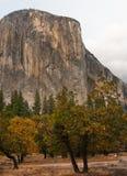 Yosemite autumn. Yosemite valley in autumn colors, El Capitan in the background Stock Photos