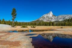 Yosemite backcountry bij gouden uur stock foto