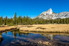 Yosemite backcountry bij gouden uur stock fotografie