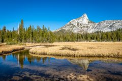 Yosemite backcountry bij gouden uur royalty-vrije stock fotografie