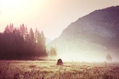 Yosemite. Beautiful Yosemite National Park landscapes, California Stock Photography