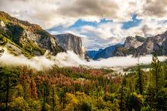 Yosemite dal på den molniga höstmorgonen Royaltyfri Fotografi